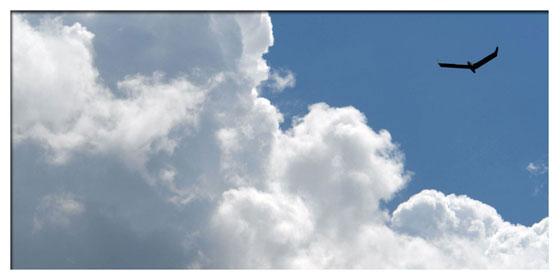 Pas trop près quand même du cumulus !